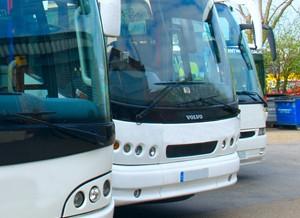 Reizen met de bus